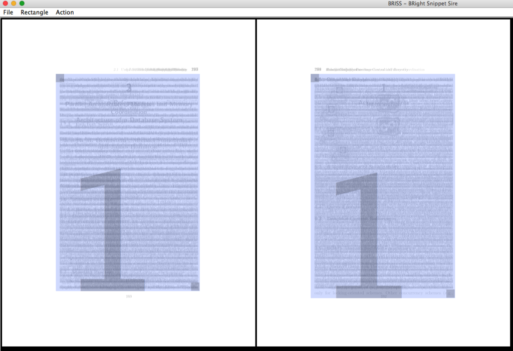 briss in action cropping PDF margins